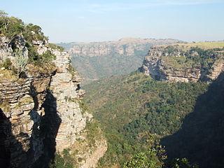 Maputaland-Pondoland bushland and thickets Montane shrubland ecoregion in South Africa