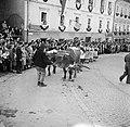 Ossen in de optocht bij de oogstfeesten, Bestanddeelnr 254-1898.jpg