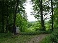 Ostromecko - widok z górnego tarasu parku. - panoramio.jpg