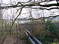 Outflow Pipes at Kingsley - geograph.org.uk - 340796.jpg
