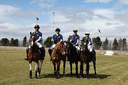 Team des Oxford University Polo Club (2013)