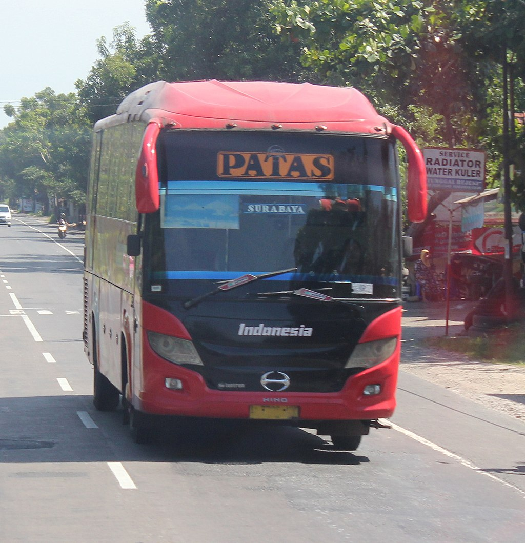 PO. Indonesia Cross town in province bus (1)
