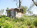 Pančevo Tamiš Old Cabin1.JPG