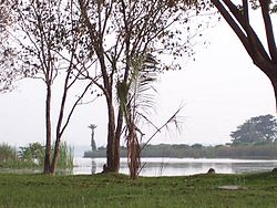 Pandavapura lake.jpg