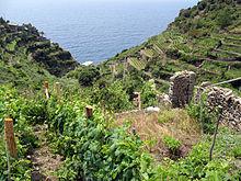 Terrazzamento - Wikipedia
