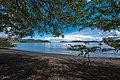 Paradise (260447117).jpeg