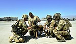 Pararescueman train with Army, military canines (9242363932).jpg