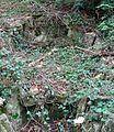 Parc-Curis-rocaille.JPG