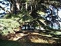 Parc de la Perle du Lac, Geneve - panoramio (16).jpg