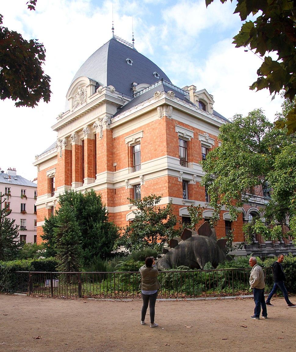 Paris-Jardin des Plantes-104-Museum national d'histoire naturelle-Stegosaurus-2017-gje