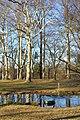 Park - Schloss Albrechtsberg - DSC09163.JPG