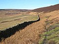 Park Wall - geograph.org.uk - 348928.jpg