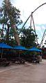 Parrot Roller coaster view 1.jpg