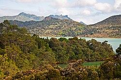 Parua Bay, Northland, New Zealand, 4th. Dec. 2010 - Flickr - PhillipC.jpg