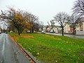 Patch of green by the Wychall Road - geograph.org.uk - 1056113.jpg