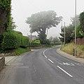 Patchy sea fog, Sidmouth Road, Lyme Regis (geograph 5816382).jpg