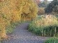 Pathway round Kernan Lake near Gilford - geograph.org.uk - 1541102.jpg