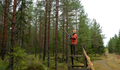 Paul Childerley driven hunt Finland 03.png