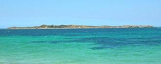Penguin Island (Western Australia) - Image: Penguin island