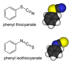 Thiocyanate - Phenylthiocyanate and phenylisothiocyanate are linkage isomers and are bonded differently