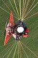 Photographe aerien paramoteur.jpg