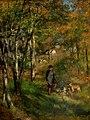 Pierre-Auguste Renoir - Le peintre Jules Le Coeur et ses chiens dans la forêt de Fontainebleau (1866).jpg