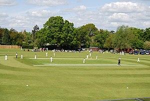 Horsham Cricket Club - Image: Playing Cricket, Horsham Cricket Club geograph.org.uk 1291784