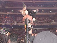 The Hardy Boyz (Jeff Hardy, top & Matt Hardy, bottom) hit the Poetry in Motion on Billy in their Tag Team Championship match.