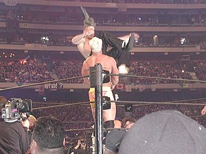 Professional wrestling double-team maneuvers - The Hardy Boyz performing Poetry in Motion on Billy Gunn.