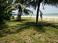Port Dickson Beach next to the Bayu Beach Hotel.jpg
