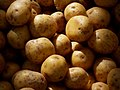 Potatoes (4799817714).jpg