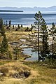 Potts Hot Spring Basin YNP1.jpg