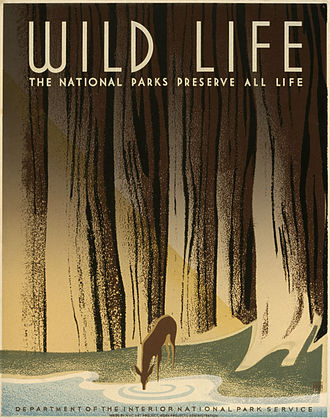 """The national parks preserve all life"", poster for National Park Service, 1940 Preservewildlifeb.jpg"