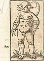 Prodigiorvm ac ostentorvm chronicon - quae praeter naturae ordinem, motum, et operationem, et in svperioribus and his inferioribus mundi regionibus, ab exordio mundi usque ad haec nostra tempora, (14761396256).jpg