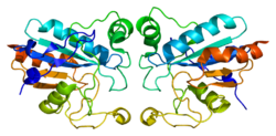 Protein GPX1 PDB 2f8a.png