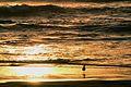 Puesta de sol. La Serena Chile.jpg