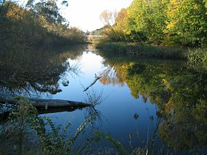 Queanbeyan River - A quiet stretch of the Queanbeyan River near the suspension footbridge, Queanbeyan.