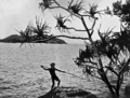 Queensland State Archives 1095 Aborigine spearing Fish Lindeman Island Whitsunday Passage c 1931.png