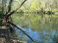 Río Tea Ribadetea.JPG
