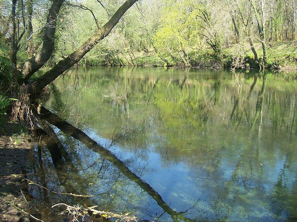 Río Tea Ribadetea