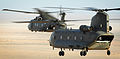 RAF Merlin and Chinook Helicopters During Exercise Desert Vortex in the Middle East MOD 45152005.jpg