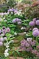 RHS Chelsea Flower Show 2014 - 14340490593.jpg