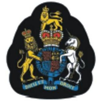 Warrant officer - WO1 badge