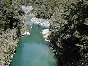 Pelorus Bridge - Rai River and Pelorus River viewed from the pedestrian suspension bridge