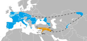 Neanderthals in Southwest Asia - The known range of Neanderthals in Southwest Asia (orange) and elsewhere.