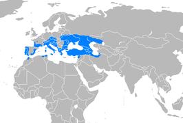 Europese Moerasschildpad Wikipedia