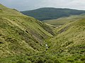 Ravine of the Nant Dinas - geograph.org.uk - 553865.jpg