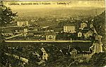 Razglednica Karlovškege ceste s Prulami.jpg