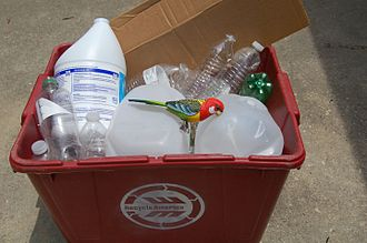 Landfill diversion - Recycle Plastic Bird