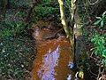 Red Burn, Kidsneuk, Irvine.JPG